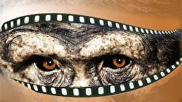 חיות אמיתיות בסרטים