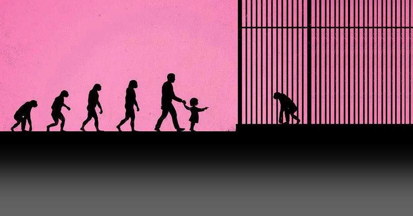 הצד האפל של גני חיות