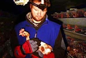 המאבק למען התרנגולות באוסטריה