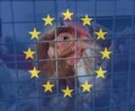 אירופה 2012