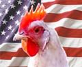 ארצות-הברית 2012
