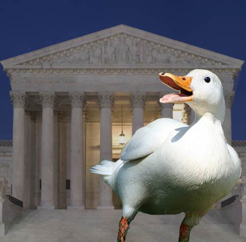 בית המשפט הפדרלי: מכירת כבד מפוטם בקליפורניה – אסורה!