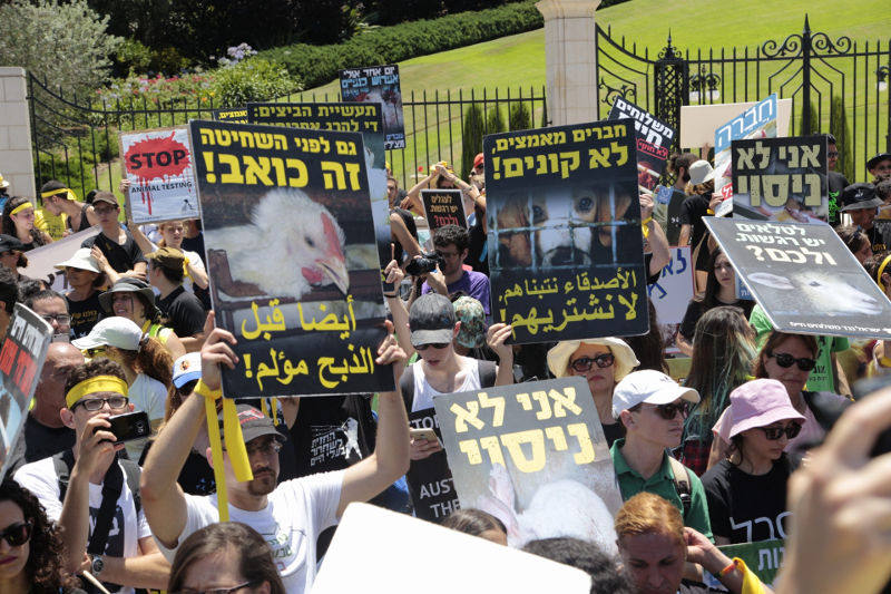 Jewish and Arab activists marching together in Haifa. Photo: Yoav Ben-Dov