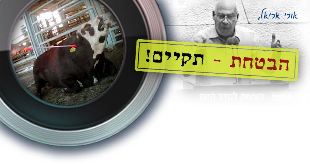 מצלמות פיקוח בכל בתי המטבחיים בישראל עד סוף 2016!